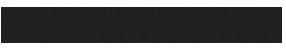 KZN VIP Protectors Logo